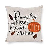 Pumpkin Kisses Flawest Wishes - Funda de almohada cuadrada para...