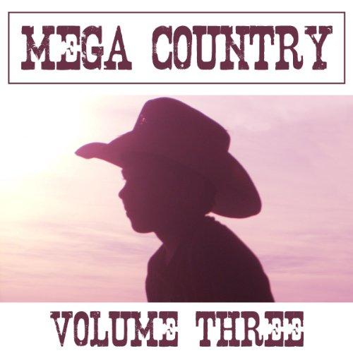 Mega Country, Volume 3