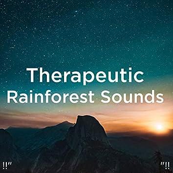 "!!"" Therapeutic Rainforest Sounds ""!!"