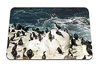 26cmx21cm マウスパッド (ペンギン氷南極大陸群れ鳥) パターンカスタムの マウスパッド