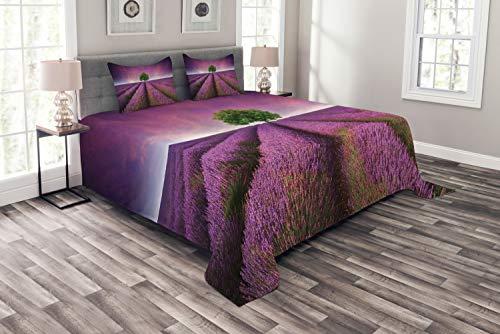 ABAKUHAUS einsamer Baum Tagesdecke Set, lila Feld, Set mit Kissenbezügen Maschienenwaschbar, für Doppelbetten 264 x 220 cm, Lila