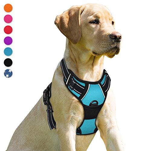 BARKBAY No Pull Dog Harness Front Clip Heavy Duty Reflective Easy Control Handle for Large Dog Walking(Blue,L)