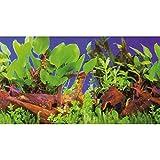 Hobby 31168 Fotorückwand-Zuschnitt Pflanzen 1