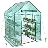 SV SCOOL VALUE Portable Greenhouses, Walkin Greenhouse for Outdoors with 2 Windows, 3 Tiers 8 Shelves PE Green Houses, Backyard Greenhouse with Ground Pegs & Ropes for Stability(56×56×76 Inches)