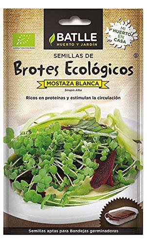 Semillas Ecológicas Brotes - Brotes ecológicos de Mostaza