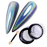 TOMICCA Poudre Holographique Ongle Paillettes Laser Poudre Ongles Glitter Mirror Nail Art Poudre Ongle kit de Chrome Pigment Manucure