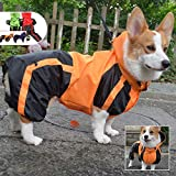 100% HIGH QUALITY - Our dog raincoat is made of waterproof polyester material, which is durable, breathable and safe, no harm to your dogs. Windproof design to keep your dos warm in winter. D-S D-M D-L is Dimensions specially suitable for Dachshund, ...