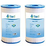 Tier1 Pool & Spa Filter Replacement for Watkins 31489 Spa Filters and for Hot Spring & Watkin Pool & Spas - Pleated Water Filter to Reduce Water Contaminants - 2 Pack