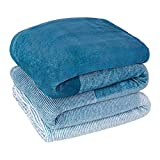 PAVILIA Flannel Fleece Ombre Throw Blanket for Couch   Super Soft Cozy Microfiber Sofa Blanket   Gradient Decorative Accent Throw, Twin Size Blanket   All Season, 60x80 Inches Turquoise Blue