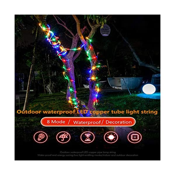 LED Fairy Rope String Lights - Liwiner USB Powered 33FT 100 LED String Light with Remote Timer 8 Mode Dimmable Strip… 4
