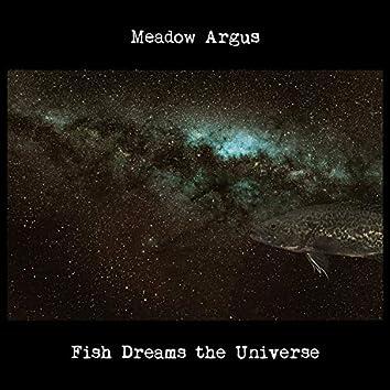 Fish Dreams the Universe