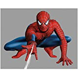 Andrew Garfield 8 inch x10 inch PHOTOGRAPH The Amazing Spider-Man (2012) Crouching & Spinning Web w/Grey Background kn