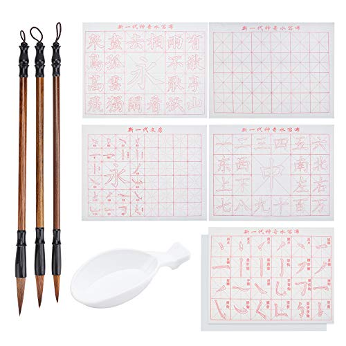 PH PandaHall 10pcs No Ink Chinese Calligraphy Set, Gridded Brush Water Writing Cloth Paper with Sienna Chinese Traditional Calligraphy Brushes and Water Dish for Beginners Practice