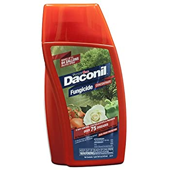 Daconil® Fungicide Concentrate: photo