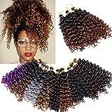 6 Paquete Extensiones Trenzas Africanas Crochet pelo 20cm Afro Curly Water Wave Trenzas Marlybob Trenzado Pelo Ombre Extensiones de Pelo Sintético Twist Braids Hair Negro a café marrón