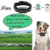 Zoom IMG-2 gps tracker collare per cani