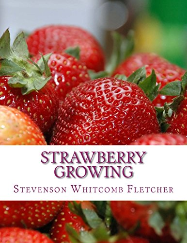 Strawberry Growing by Stevenson Whitcomb Fletcher