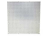 "WallPeg Pegboard Panels Tuff Poly-propelene with 1/4' holes on 1"" centers Organize Tools Workbench Kit"