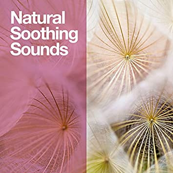 Natural Soothing Sounds