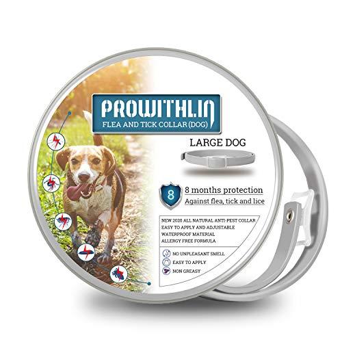 prowithlin Collar Antiparasitario para Perros, 62cm Natural