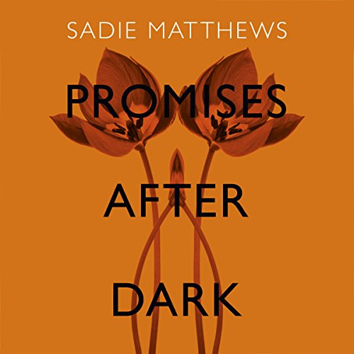 Promises After Dark audiobook cover art