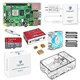 TRASKIT Raspberry Pi 4 Model B /ラズベリーパイ4B(8GB RAM)技適マーク付/MicroSDHCカード128GB NOOBSプリインストール/簡単に取り付けるケース/5.1V/3A Type-C スイッチ付電源/2つのMicroHDMI-to-HDMIケーブルライン/3つヒートシンクと静音冷却ファン/カードリーダ/日本語取扱説明書/2年保証付