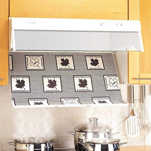 Filtres intelligents pour hotte | 57x47cm | Lot de 2 | wenko