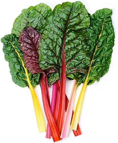 Earthcare Seeds Swiss Chard Rainbow 200 Seeds Heirloom Open Pollinated Non GMO product image