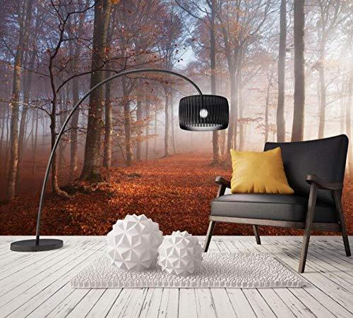 3D vliesbehang fotobehang premium fotobehang behang behang fris en eenvoudig mooi bos bomen mist muurschildering tv achtergrond wand decoratie 3D wallpaper 430*300 430 x 300.