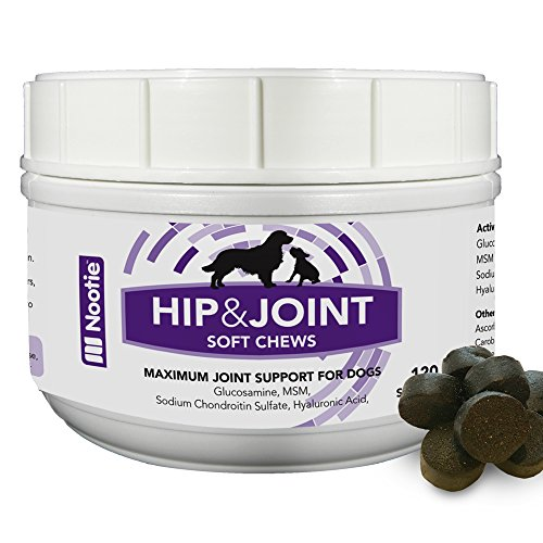 Nootie Glucosamine Chondroitin Hip and Joint Supplement for Dogs, 120 Soft Chews