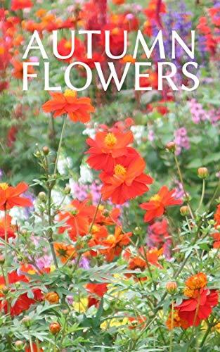 秋の里山に咲くたくさんの花たち 四季の自然の写真集: 身近にある美しい自然 版権フリー、商用利用可の写真集 (扇デザインスタジオ)