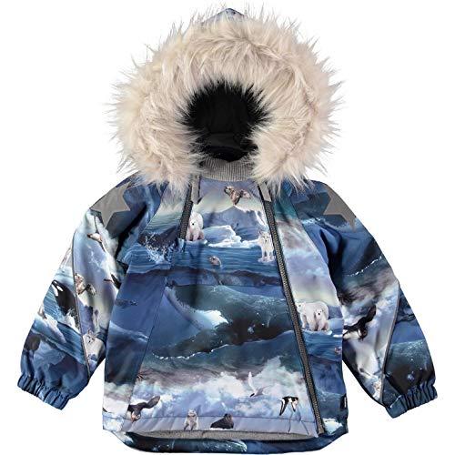 Molo Winterjacke Hopla Arktis-98