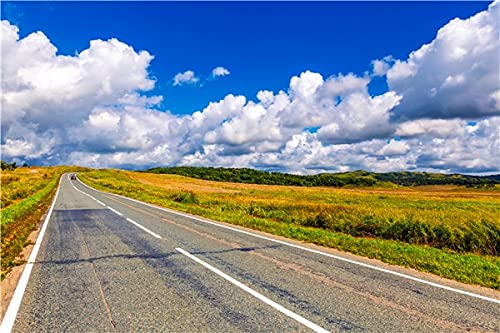 Accesorios de Fondo de fotografía de Vinilo, fotografía de Tema de Carretera, Fondo de fotografía de Estudio A13 9x6ft / 2,7x1,8 m