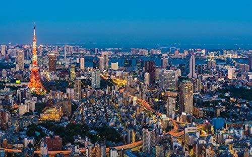 OKOUNOKO Puzzle 1000 Piezas, Paisaje Urbano, Rascacielos 1, Decoración para El Juego De Juguetes para El Hogar, 75X50Cm