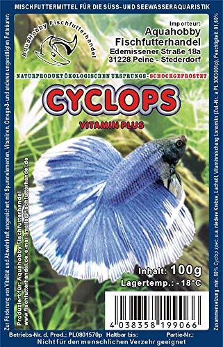 Wirbellosenzucht-Foltis 20x Cyclops 100g Frostfutter Schokotafel Frost 100g; 2Kilogramm Frostfutter Frostfutter, Zierfischfutter für das Aquarium …