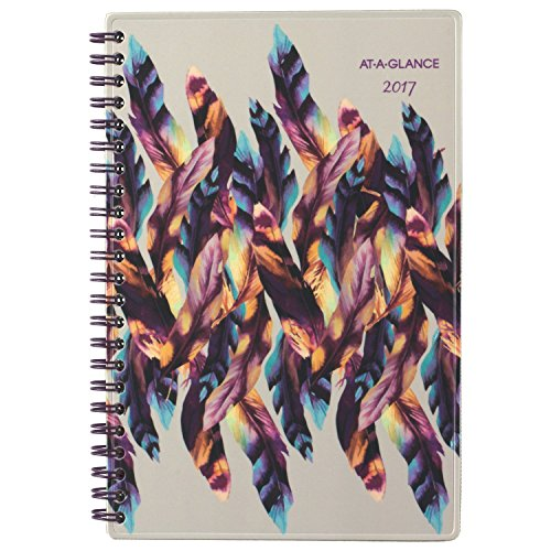 """AT-A-GLANCE Weekly / Monthly Planner / Appointment Book 2017, 4-7/8 x 8"""", Gypsy (175-200)"""