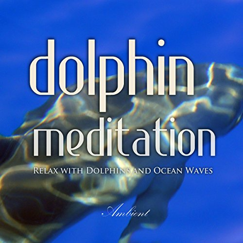 Dolphin Meditation cover art