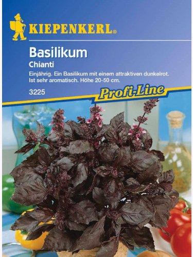 Basilikum Chianti Rotblättriges einjährig