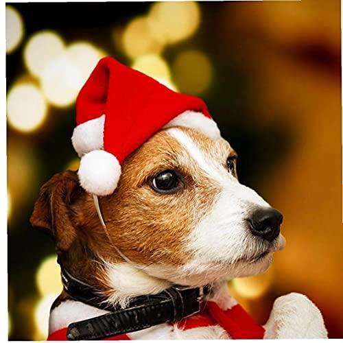 Ruluti 1 Unid Mascota Santa Sombrero Sombrero Navidad Traje Gato Perro Mascotas...