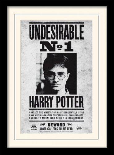 Harry Potter MP10616P-PL afbeelding, ingelijst met passe-partout, papier, meerkleurig, 30 x 40 cm