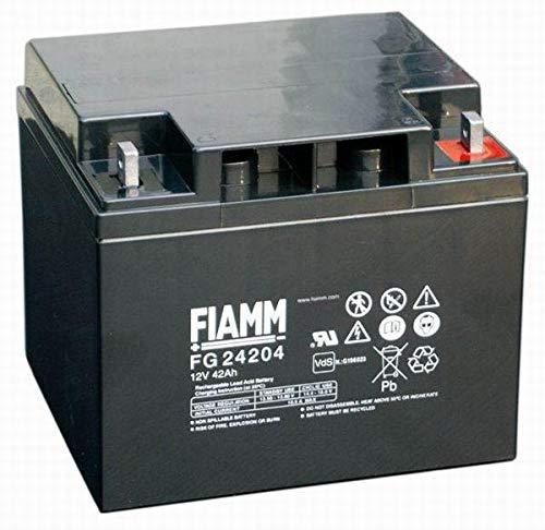 FIAMM Batterie 12 V 42 Ah FG24204 VRLA AGM luftdicht, photovoltaikumps