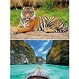 GREAT ART Set de 2 Posters XXL – majestuoso Tigre de la Jungla - bahía Tropical Gato Salvaje Tailandia Barco de Cola Larga mar Palmeras Rocas decoración Foto (140 x 100 cm)