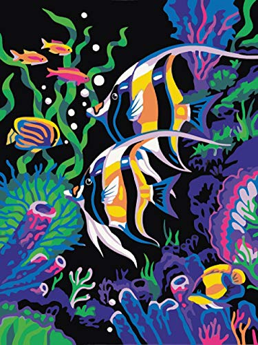 WPDX DIY Oil Painting Paint by Number Kits for Adults & Kids Big and Small Fish Best Arts Craft for Home Wall Decor or Gift Package 16x20 Inch(Without Frame)