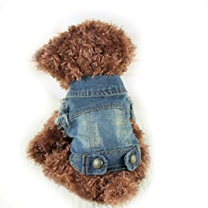 Vintage Petit Chien Chat Jeans Denim Manteau cool Dog Puppy Gilet Sweat à capuche vêtement pour animal domestique Chihuahua Pitbull Chien Vêtements