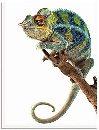 Artland Glasbilder Wandbild Glas Bild einteilig 45x60 cm Hochformat Natur Afrika Tiere Reptilien Madagaskar Chamäleon T5RW