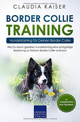 Border Collie Training – Hundetraining für Deinen Border Collie: Wie Du durch gezieltes Hundetraining eine einzigartige Beziehung zu Deinem Border Collie aufbaust (Border Collie Band, Band 2)