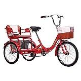 ZFF 20 Pulgadas Plegable Triciclo para Adultos Velocidad Única 3 Ruedas...