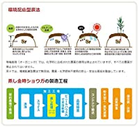 無添加 農薬不使用 蒸し 金時ショウガ ( 粉末 ) 100g★送料無料ネコポス★農薬・化学肥料不使用金時生姜100%★刺激的な辛さですので、何かで割って飲むのがお勧めです。飲めば体が温まり、冬場はもちろん夏場の冷房対策にもおすすめです。