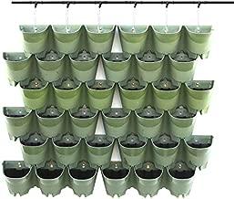 Worth Garden SELF Watering Indoor/Outdoor Vertical Wall Hangers Pots Included Wall Plant Hangers Wall Mounted Hanging Pot has 3 Pockets 36 Total in Set 3-Year Warranty