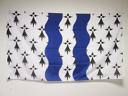 Frans departement Ille-et-Vilaine Vlag 150x90 cm voor een paal - Franse vlaggen 90 x 150 cm - Banner 3x5 ft met gat - AZ FLAG